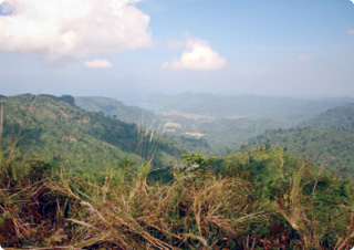 A view over Elysium Resources' Malang project, which is in East Java, 60km southeast of the city of Malang.