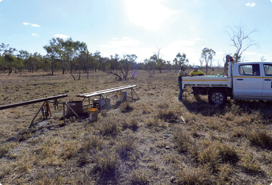 A drill site on Liberty Resources' Bowen Basin exploration tenement.