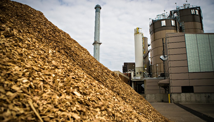 Generating power from solid plant biomass