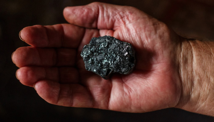Future of coal – to jump or not to jump. That is the question